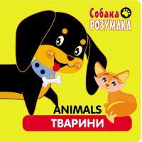 Собака Разумака АССА Животные