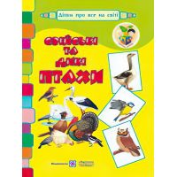Домашние и дикие птицы. Демонстрационные карточки
