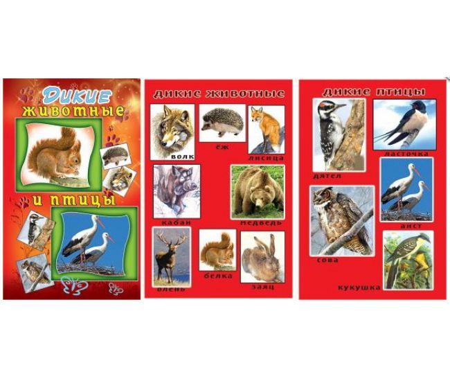 Набор карточек: Дикие животные и птицы - Издательство Эдельвейс - ISBN 000020