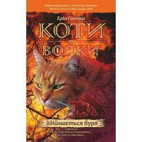 Коты воины АССА Поднимается буря Книга 4