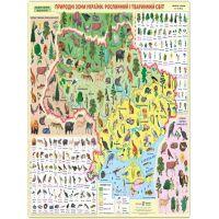 Плакат школьный Пiдручники i посiбники Природные зоны Украины Растительный и животный мир