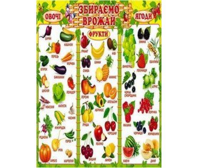 Плакат школьный: Собираем урожай - Издательство Свiт поздоровлень - ISBN 1330051