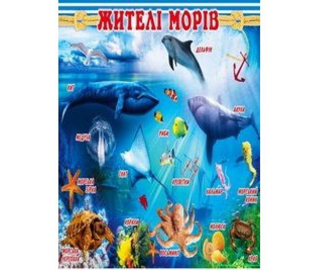Плакат школьный: Жители морей - Издательство Свiт поздоровлень - ISBN 1330044
