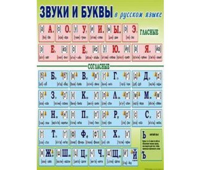Плакат школьный: Звуки и буквы в русском языке - Издательство Свiт поздоровлень - ISBN 1330047