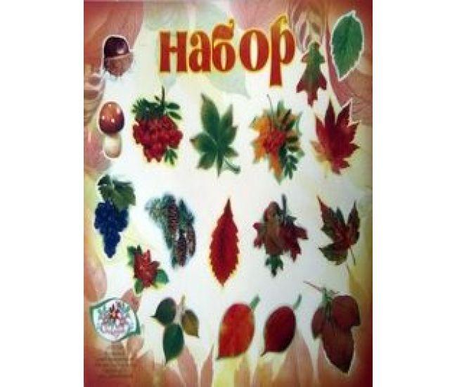 Набор на скотче Осенний - 000036