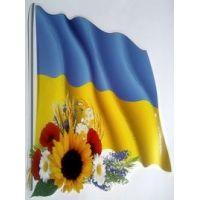 Набор Украинская национальная символика