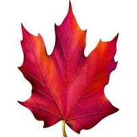 Украшение на скотче Кленовый лист