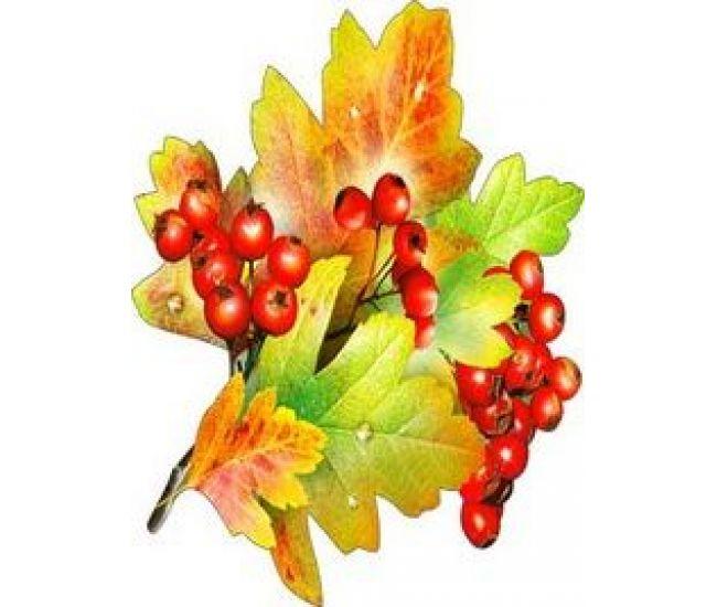 Украшение на скотче Листья и плоды боярышника