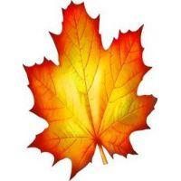 Украшение на скотче Осенний кленовый лист