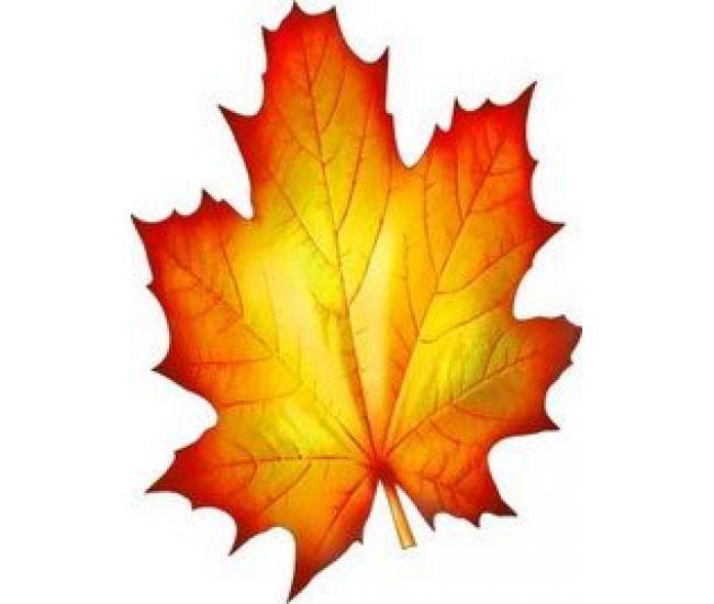 Украшение на скотче Осенний кленовый лист - Издательство  - ISBN 000094
