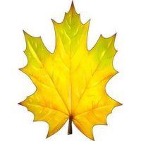 Украшение на скотче Осенний лист клена
