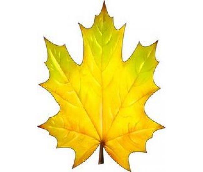 Украшение на скотче Осенний лист клена - Издательство  - ISBN 000108