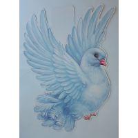 Плакат детский Голубь